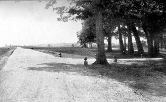 Reynolds Woods and Reynolds Avenue around 1900-1904, showing more the shell stones that were used to keep traffic on the road.  NPS