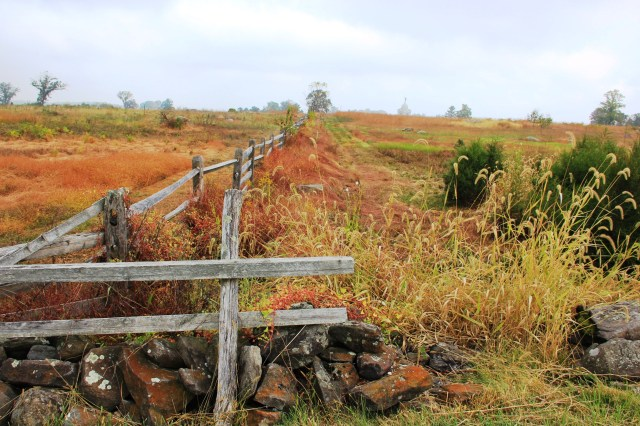 The fence that runs between the Neinstedt feild on the left and the Wiekert orchard on the right, looking north with the Pennsylvania Memorial in the background.